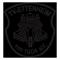 Homepage TV Ettenheim Logo